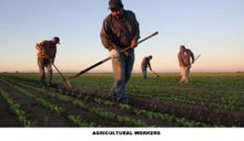 agricultar-worker-copy